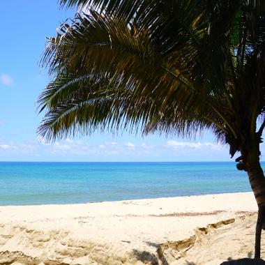 DSC02865 beach photo