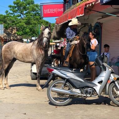 Horse Motorcycle Sayulita